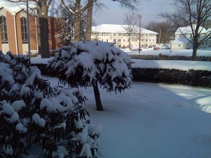Snow Feb 2016